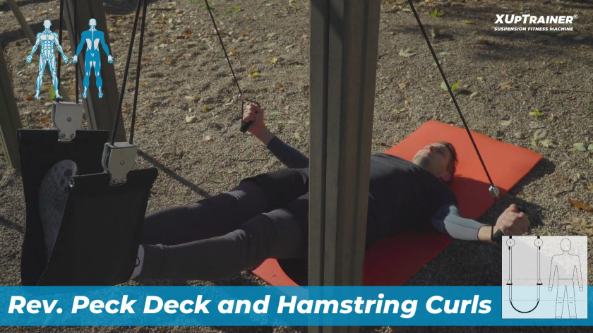 XUP backplank rev. peckdeck and hamstrings curls - upper back, rear thighs, core