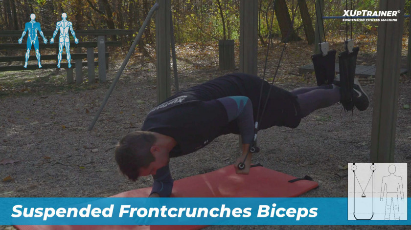 Suspended Frontcrunches Biceps - effective upper body and core exercise