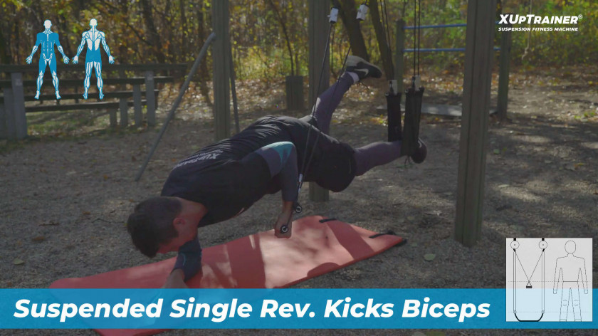 XUP Suspended Single Rev. Kicks Biceps - for athletes and sportsmen to empower core